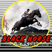Black Horse Casino Slots FREE