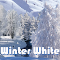 Winter White PRO LiveWallpaper icon