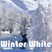 Winter White PRO LiveWallpaper