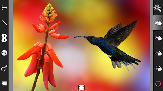 Color Effect Photo Editor Pro v1.4.0
