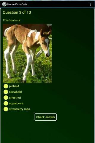 【免費教育App】Essential Horse Care Quiz-APP點子