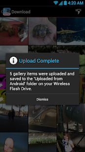 SanDisk Wireless Flash Drive- screenshot thumbnail