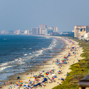 A Day at the Beach by Aulander Skinner - Landscapes Beaches ( beaches, beach, crowd, sun, people, humanity, society )