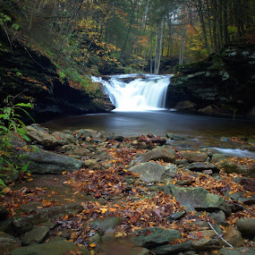 Lower Twin Falls by Isaac Golding - Landscapes Waterscapes ( waterfalls, falls, state game lands, pennsylvania, sgl 13 )