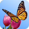 Butterfly Garden 3D Wallpaper