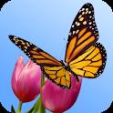 Butterfly Garden 3D Wallpaper