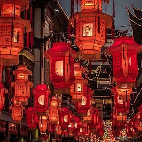 lantern festival by Jen Thiele - Novices Only Street & Candid