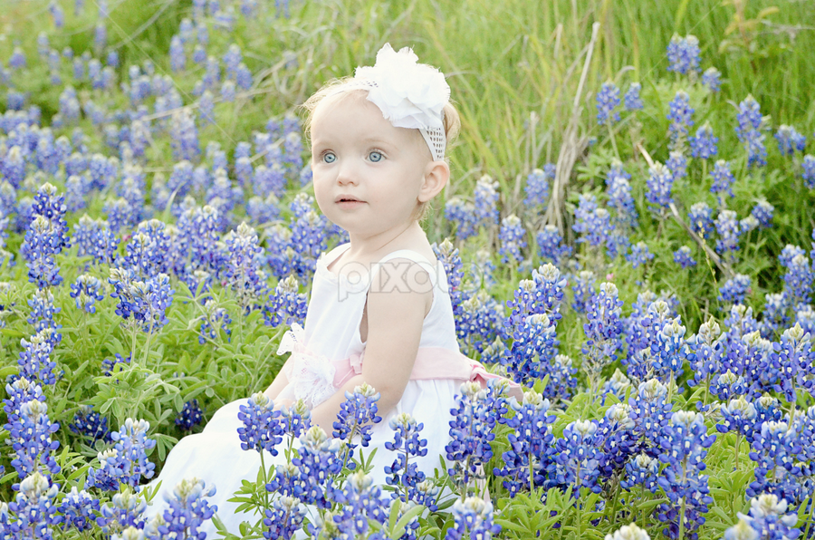Texas Bluebonnet Baby by Sarah Sanville - Babies & Children Children Candids ( girl, family, texas, bluebonnets, toddler )