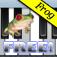 Frog Piano Free logo