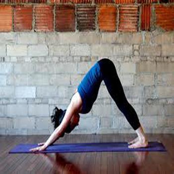 Back Pain Yoga Videos