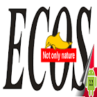 Ecos - Videocollection icon