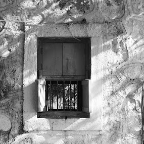 window by Nirav Raval - Black & White Buildings & Architecture ( abstract, pattern, window, black & white, window two )