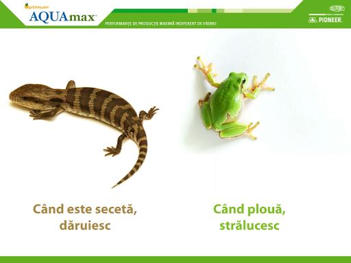 Catalog Optimum® AQUAmax®