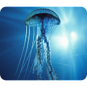 Beautiful Jellyfish Wallpaper logo