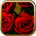 Rose Garden Puzzle Games icon