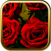 Rose Garden Puzzle Games