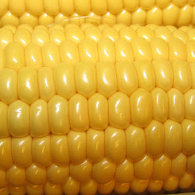 Corny  by Anne Santostefano - Food & Drink Fruits & Vegetables ( macro, nature, food, nature close up, corn,  )