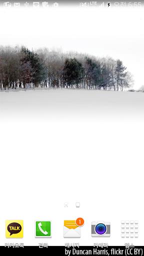 눈내리는적막한겨울숲배경