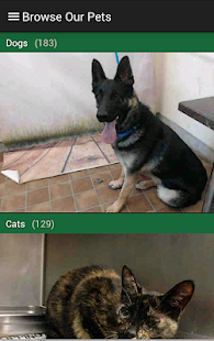 Ventura County Animal Services- screenshot thumbnail