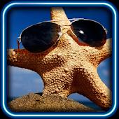 Sea Stars Best live wallpaper