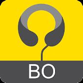 Boskovice - audio tour