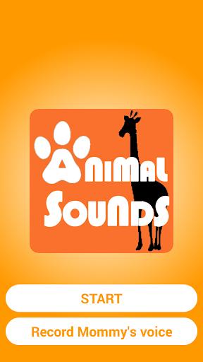 재미있는 동물소리