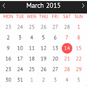 Fancy calendar widget