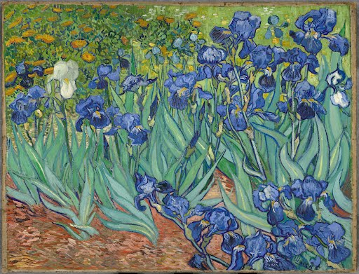 Irises - Vincent van Gogh — Google Arts & Culture