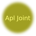 Apl Joint icon