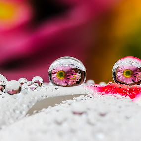 WaterDrops by JL Tan - Abstract Water Drops & Splashes