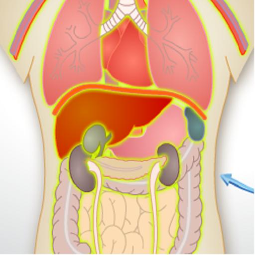 人體解剖學 解謎 App LOGO-APP試玩