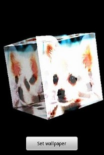 3D cute dog 68- screenshot thumbnail