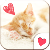 Cute wallpaper★Sleeping Cat