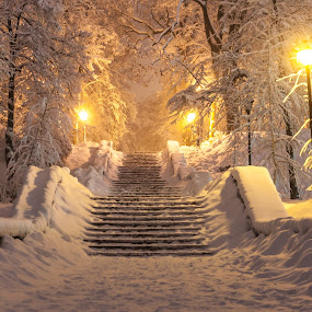 Winter fairy tail Kiev Ukraine by Valerii Tkachenko - City,  Street & Park  Night ( winter, ukraine, wonderland, kiev, cityscape, fairy tail, landscape, new, year,  )