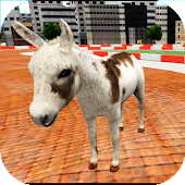 Animal Racing : Donkey