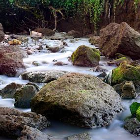 d rocks by Stevie Go - Nature Up Close Rock & Stone ( water, nature, landscape, rocks )