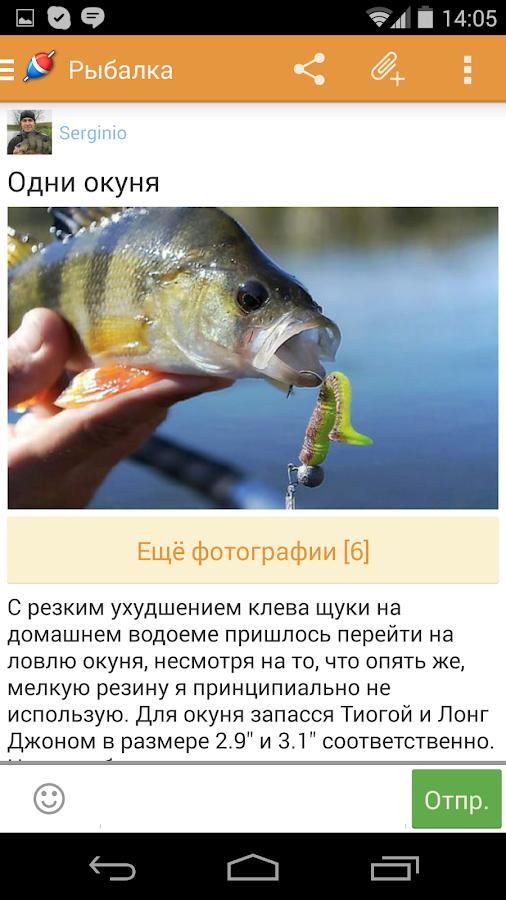 виды прикормок для рыбы