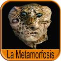 Audiolibro La Metamorfosis logo