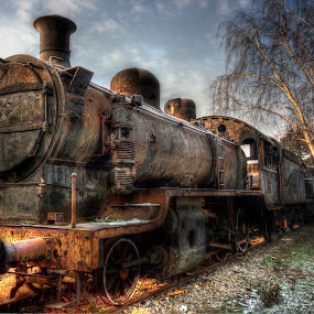 The Sleeping Beauty by Dragan Gavrillo Velickovic - Transportation Trains (  )