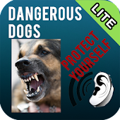 Dangerous Dogs Lite Version