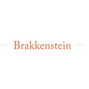 Tải Brakkenstein APK