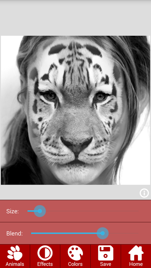 Animal Faces - Face Morphing- screenshot