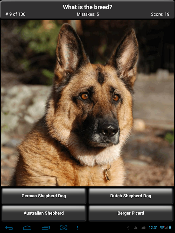 Dog Breed Quiz Test Your Knowledge