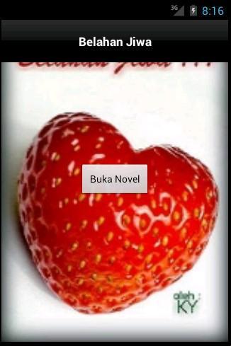 Novel Belahan Jiwa oleh KY
