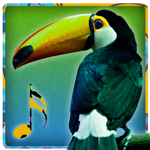 音乐の鳥が聞こえる - 着メロを LOGO-HotApp4Game
