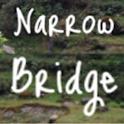 Narrow Bridge Personal Finance logo