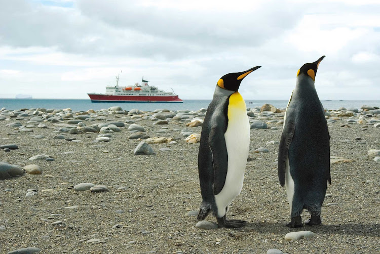 Two emperor penguins in Salisbury Plains, Antarctica, during a G Adventures expedition.