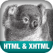 HTML and XHTML Pocket Ref