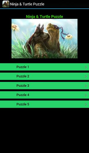 Ninja Turtle Puzzle