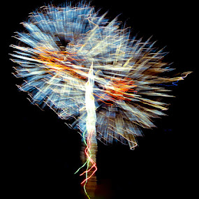 Dandelion Fireworks by Bill Morris - Abstract Fire & Fireworks ( 4th of july, fireworks, night sky, streamers, shooting )